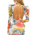 FLORAL PRINT PUFF OPEN BACK DRESS MESH WITH FULL LINING